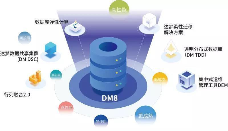 dm8.jpg